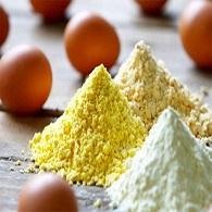 پودر تخم مرغ